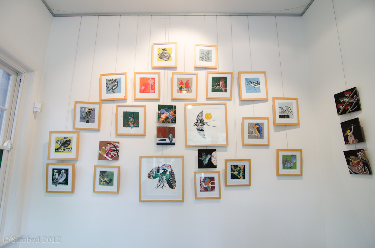 The main wall of Fiona Roderick's body of work
